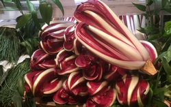 Putting the 'rad' in radicchio